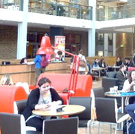 Student studying in student union